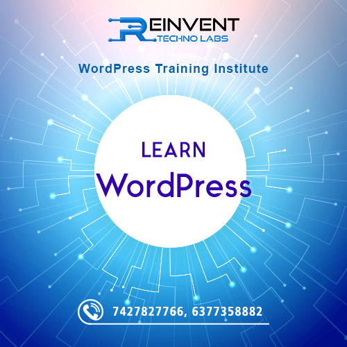 WordPress Training Institute in Jaipur